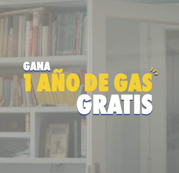 Bases Legales Concurso Año de Gas Gratis Campaña Invierno 2017 - Concurso Cerrado